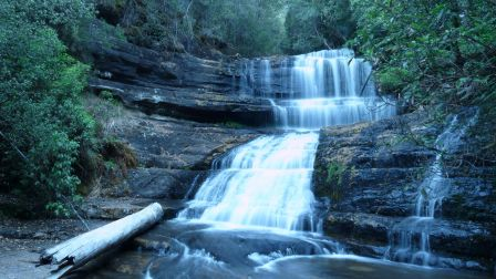 Lady Barons Falls pres des fameuses Russell Falls dans le Mount Field National Park